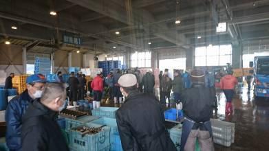 魚市場の風景